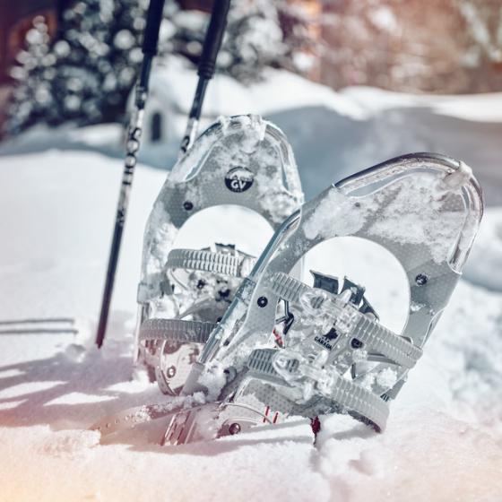 Snowshoeing in Bettmeralp