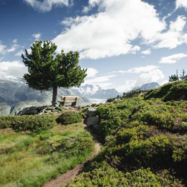 Plein les yeux sur l'Aletsch Panoramaweg
